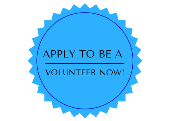volunteer now button