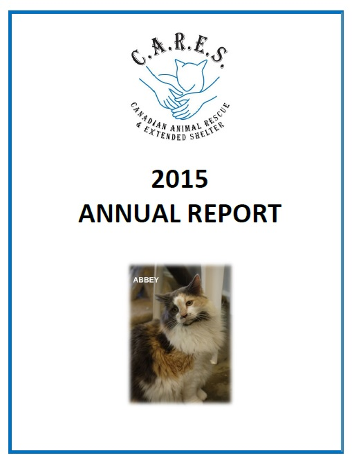 CARES 2015 Annual Report