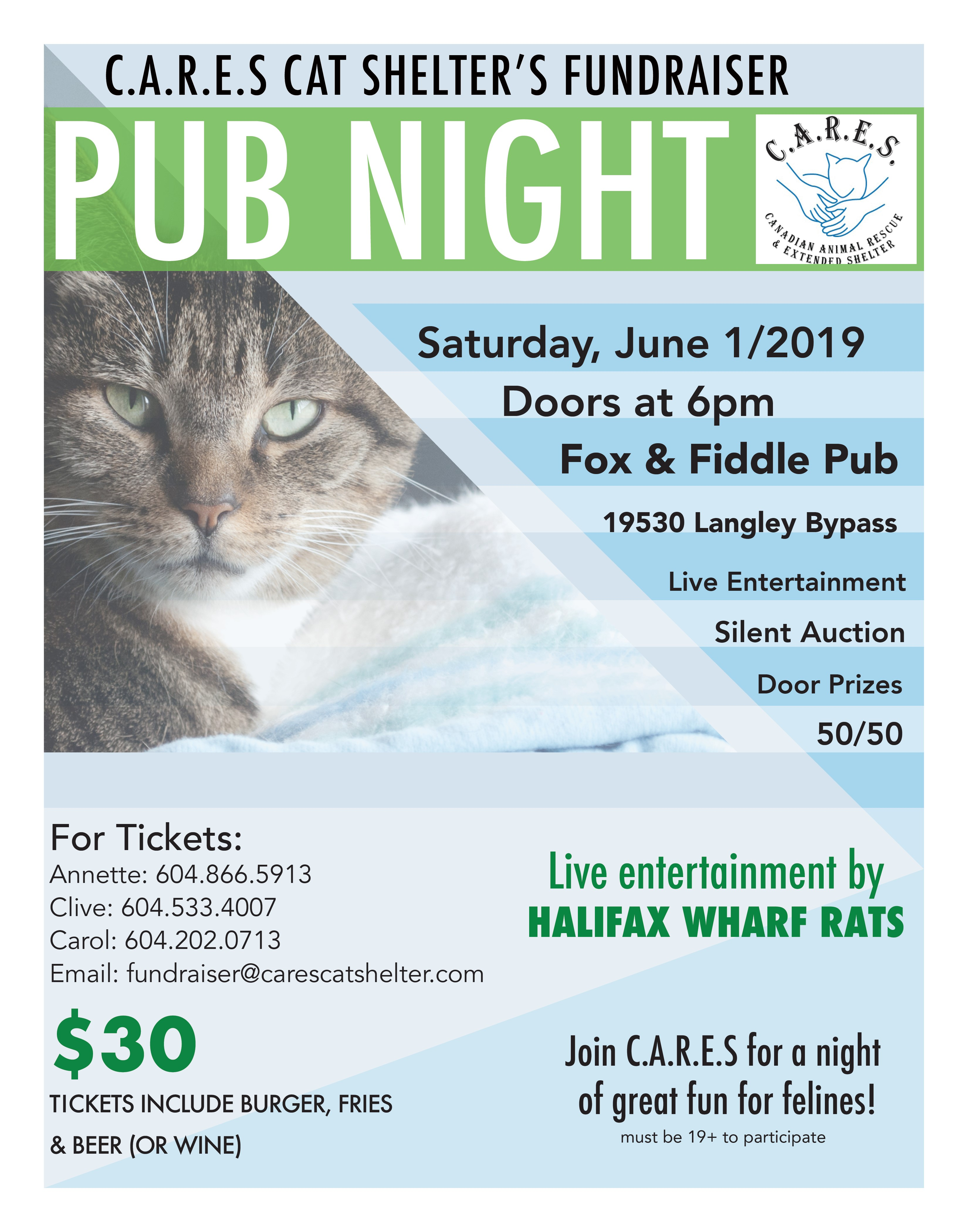 Pub Night for the Cats Poster